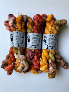 PRE-ORDER: Fall Harvest Mini Skein Set DK