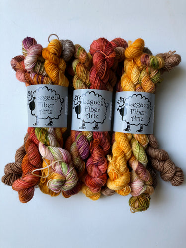 Fall Harvest Mini Skein Set