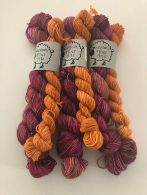 Mary Sanderson Micro Sock Kit