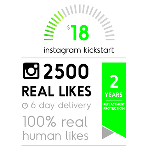 2500 Real Instagram Likes