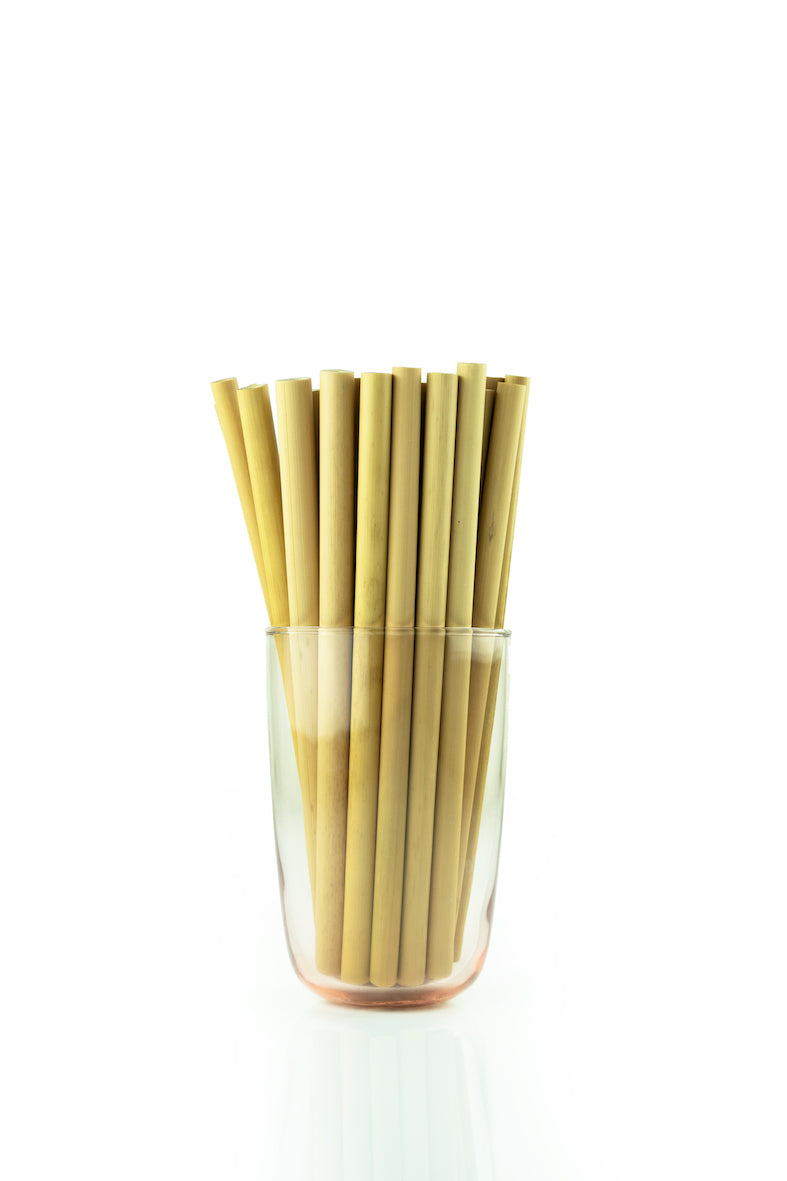 Bamboo Reusable Straw