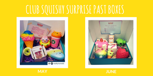 Squishies - Club Squishy Surprise Past Boxes