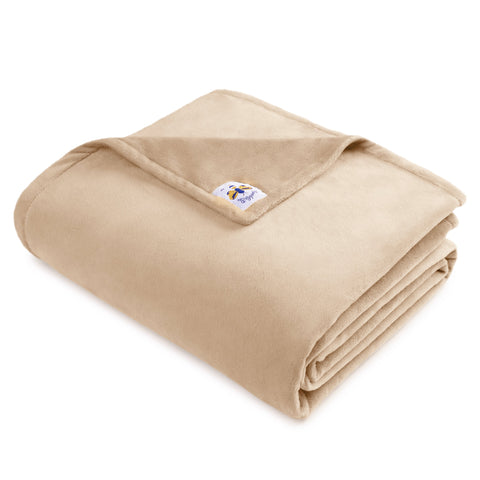 """Bigger Bee"" Minky Throw Blanket Solid Camel **In Stock**"