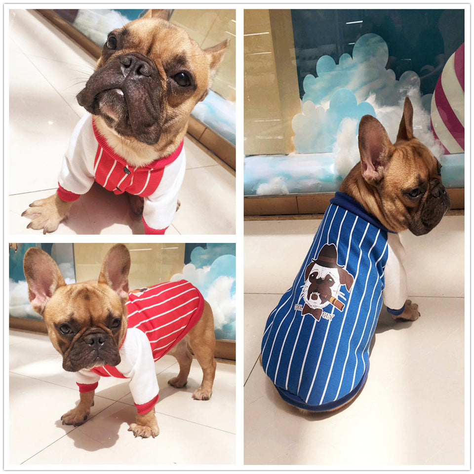 Frenchie Jacket