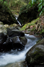 Photography and hiking in Sao Miguel (Azores Island) with Carlos