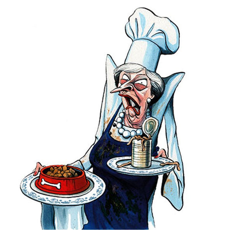 Cartoon of Theresa May, an accurate portrayal