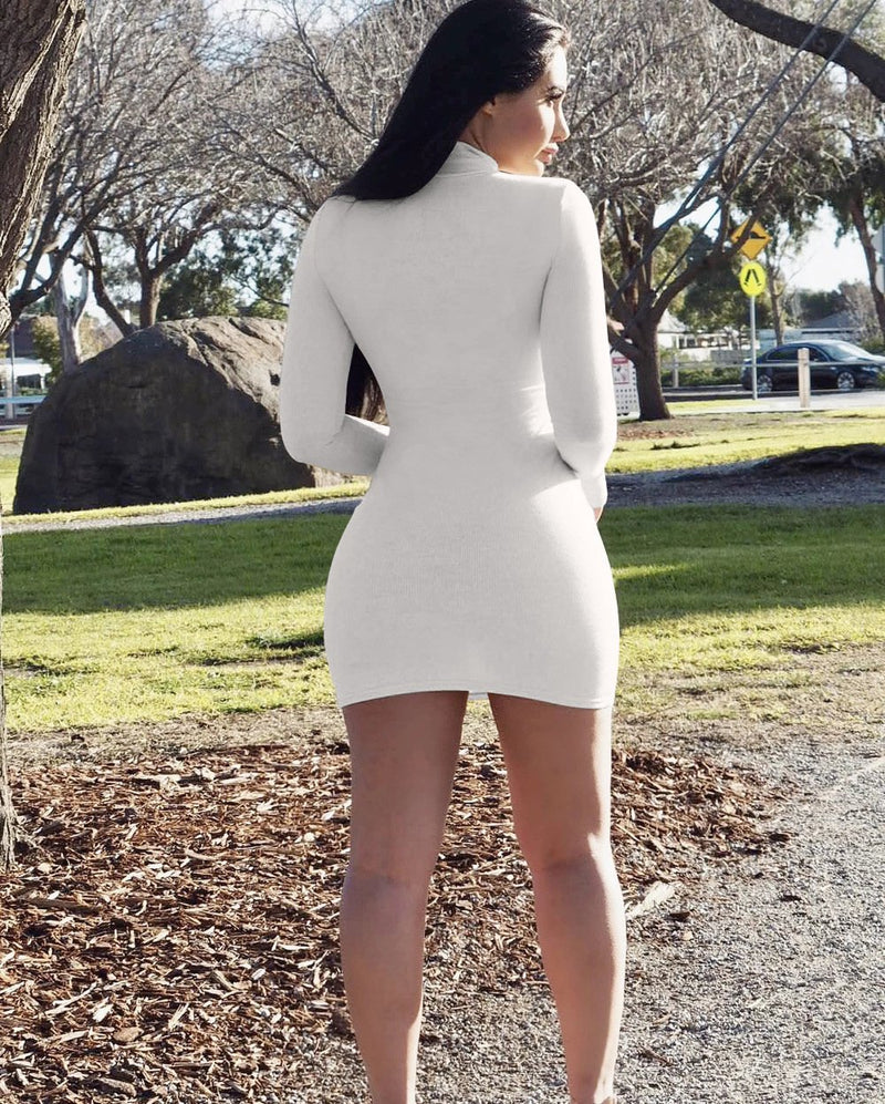2019 New Fashion Autumn Long Sleeve Turtleneck Basic Mini Dress - fashionshoeshouse