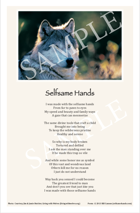 Selfsame Hands Poster (40% of the profit goes to livingwithwolves.org)