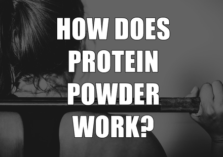 How Does Protein Powder Work?