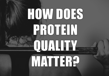 How Does Protein Quality Matter?