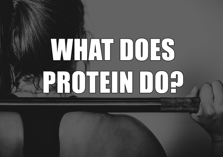 What Does Protein Do?