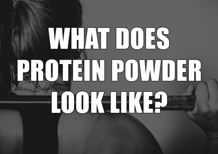 What Does Protein Powder Look Like?