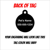 Kinda' Naughty Christmas Holiday Engraved Pet ID Tag