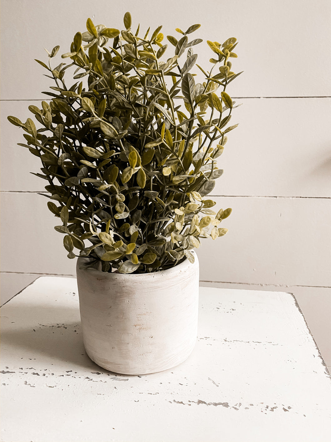 Faux Potted Boxwood
