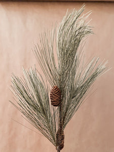 Pine Spray w/ Cones