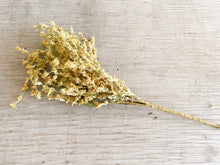 Faux Dried Yarrow Spray