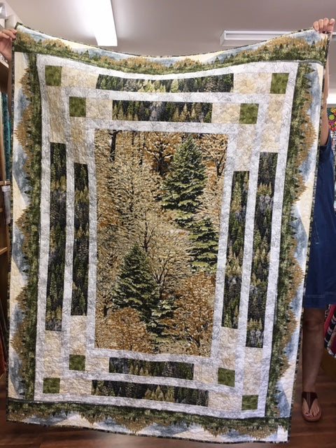 Hand Crafted Quilt Raffle 2019 Ohio National Specialty