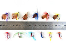 Load image into Gallery viewer, 12pcs/set Fly Fishing Lures