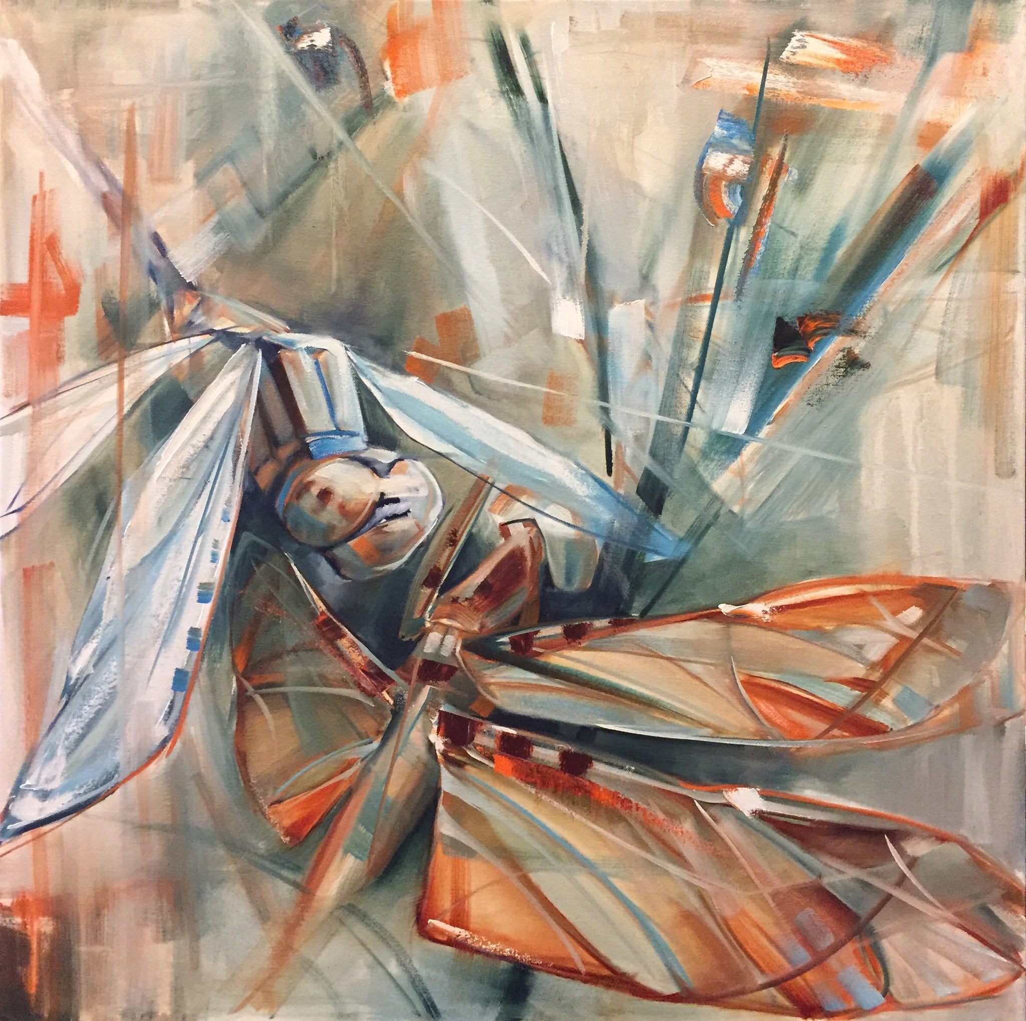 dragons flying 30x30 katie maher fine art