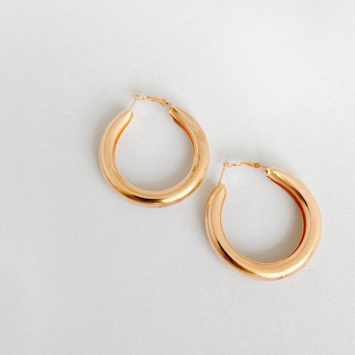 Hailey Earrings - BelleStyle