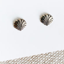 Shell Earrings - BelleStyle