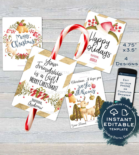 Christmas Classroom Favors Tag, Kids Editable Christmas Candy Cane Thank You Cards, Printable Custom Teachers Template diy INSTANT DOWNLOAD