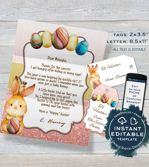 Easter Bunny Letter, Editable Letter from the Easter Bunny Note, Easter Rabbit Trap Message, diy Personalized Printable INSTANT DOWNLOAD