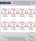 Editable Sparkler Tag Template, 4th of July Printable Favor Tags, Personalized Let's Sparkle Birthday Party Thank you diy INSTANT DOWNLOAD