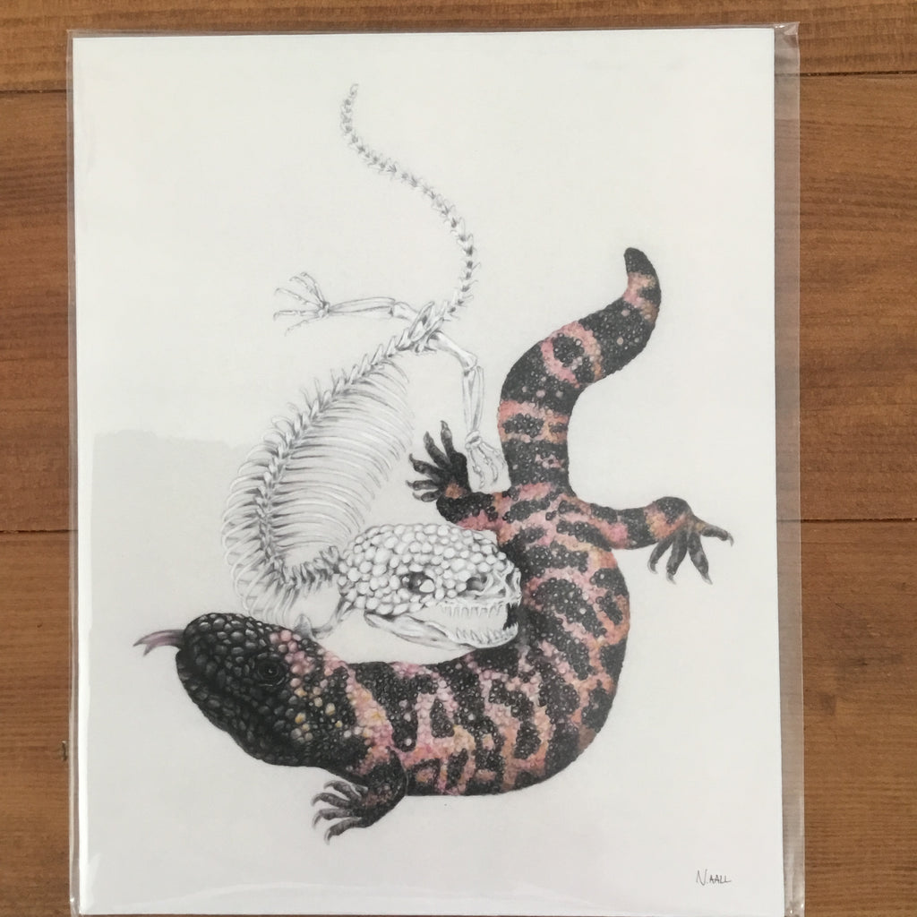 "(c) Aall Forms of Life ""Gila Monster and Skeleton"" Print"