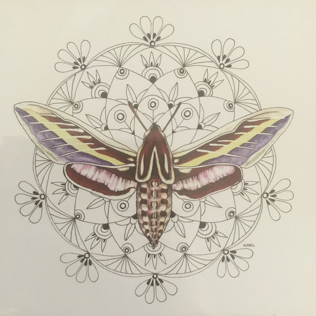 (c) Aall Forms of Life Crown Chakra Sphinx Moth Print