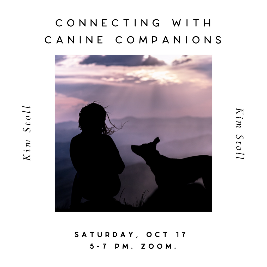 Connecting with Canine Companions