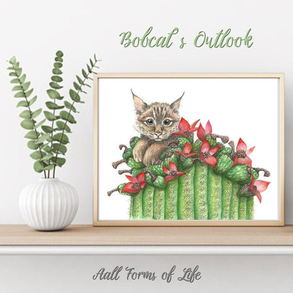 "(c)  Aall Forms of Life ""Bobcat's Outlook"""