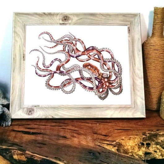 "(c) Aall Forms of Life ""Mimic Octopus"""