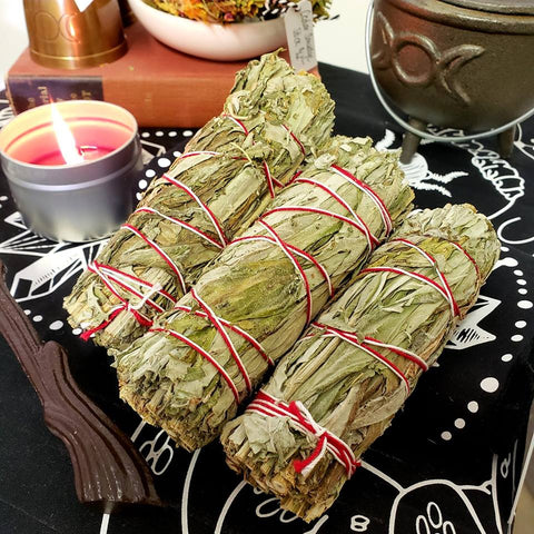 Mugwort Bundle