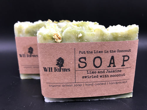 Put the Lime in the Coconut- Bar soap