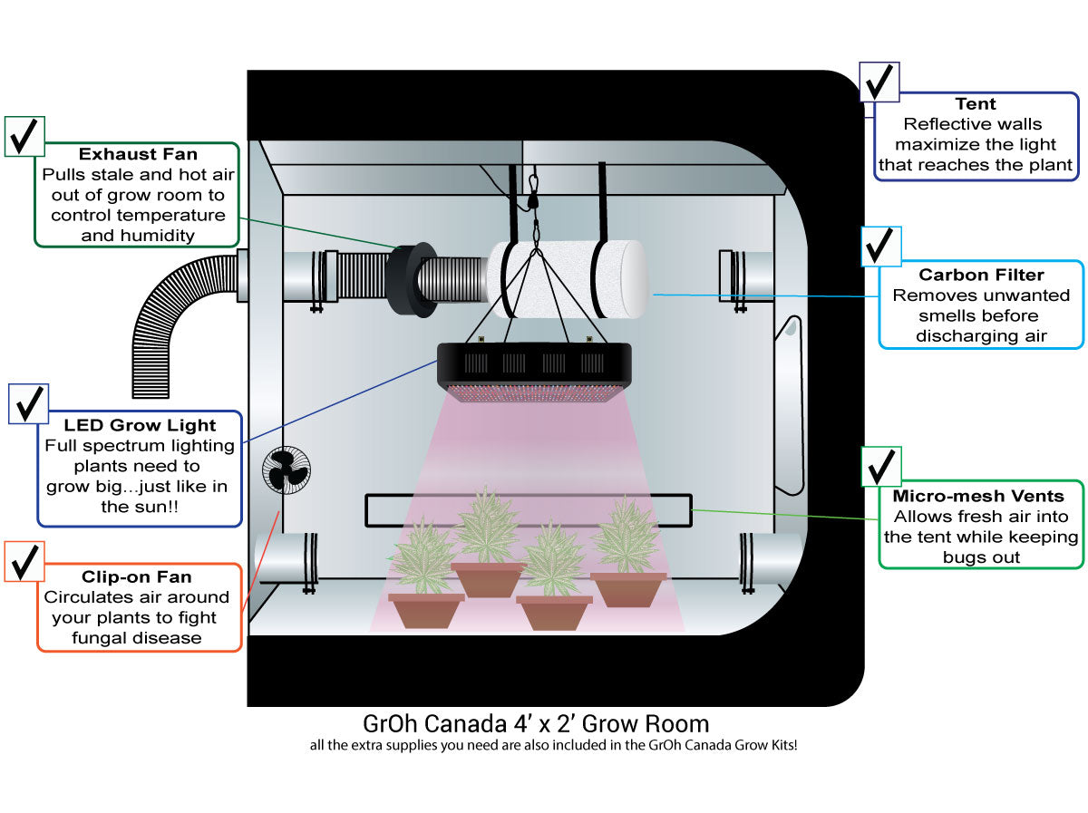 Ideal Grow Room Setup for Indoor Growing