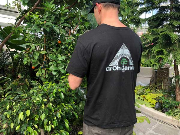 GrOh Canada Team member working in greenhouse