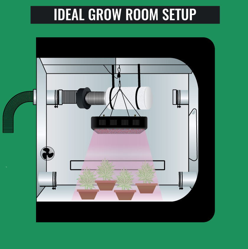 Ideal Grow Room Setup