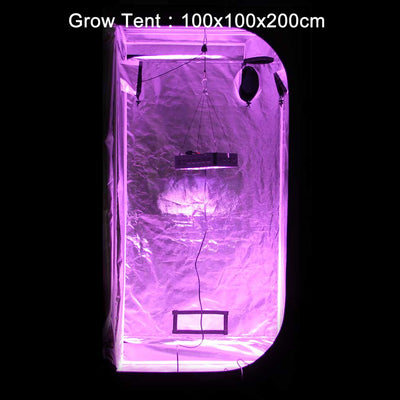 VIPARSPECTRA V300 Grow Light in Grow Tent