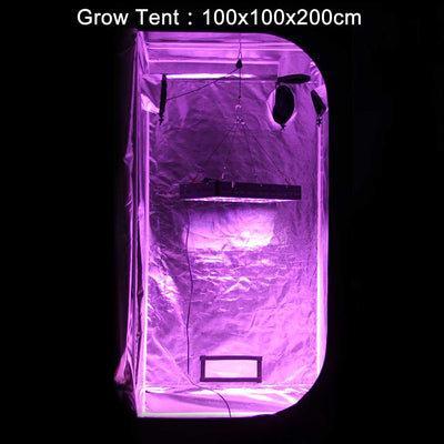 LED GROW LIGHT IN GROW TENT