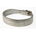 Rock Star Collars | Dogs and the City