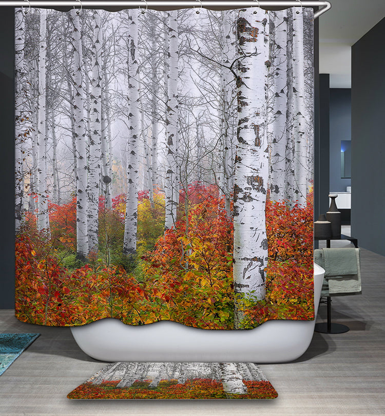 Autumn White Birch Tree Shower Curtain