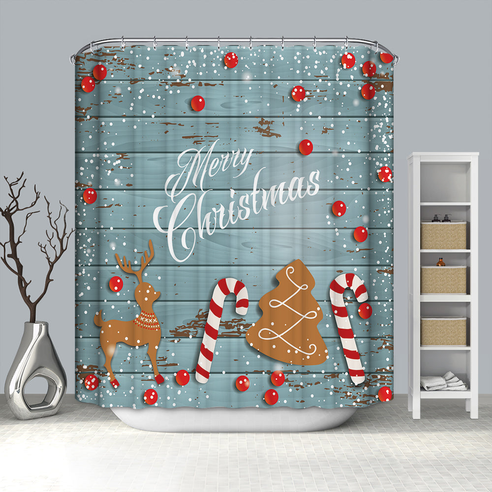 Blue Wood Door Print Christmas Ornaments Shower Curtain