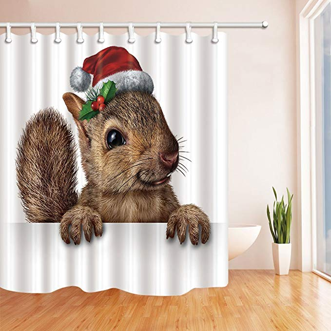Christmas Santa Hat Funny Squirrel Shower Curtain