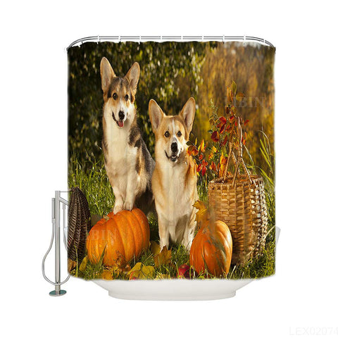 Cute Pet Dogs with Harvest Basket Corgi Pumpkin Shower Curtain