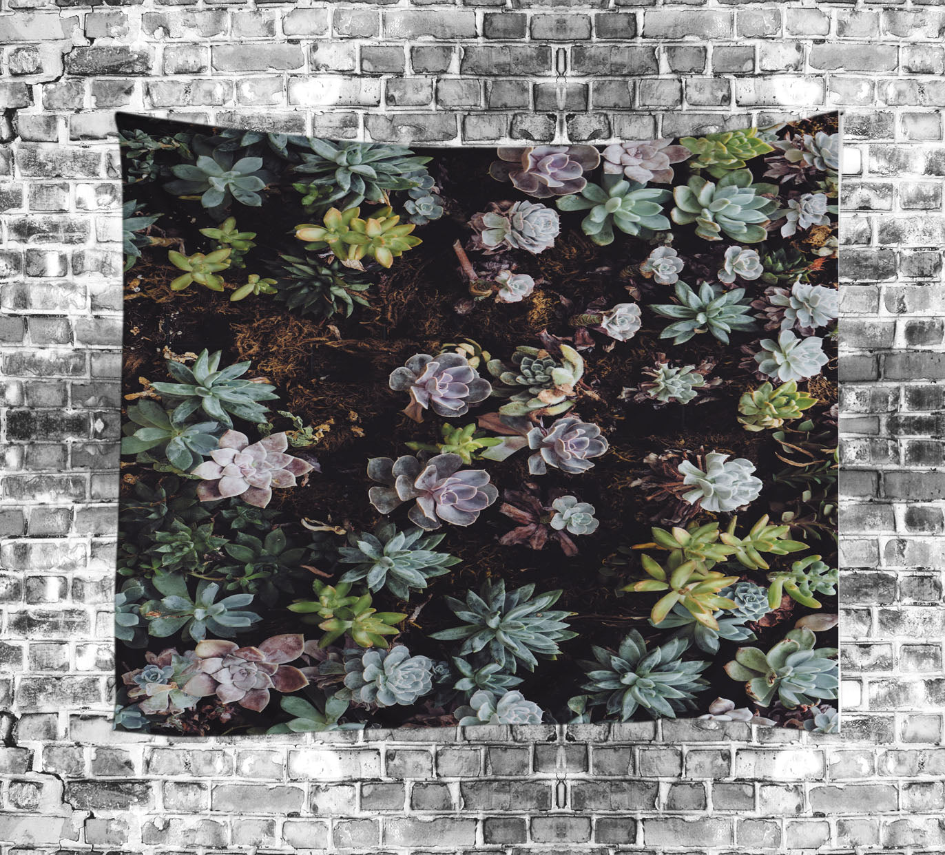 Natural Landscape Succulent Wall Tapestry | GoJeek