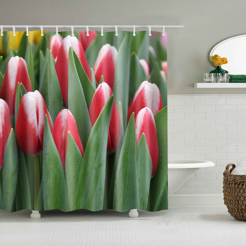 Nature Red Tulip Blossom Shower Curtain