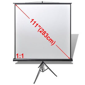 manual-projection-screen-with-height-adjustable-stand-200-x-200-cm-1-1-vxl-240727-bitpay-zip-coinbase