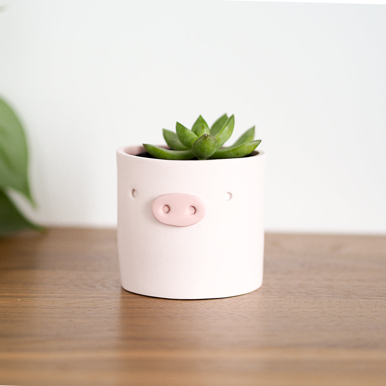 Pig Decorative Planter Pot