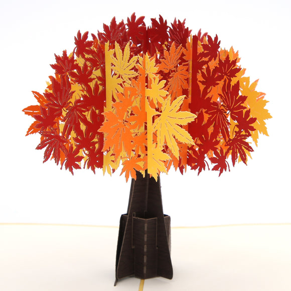 Maple Tree Pop Up Card